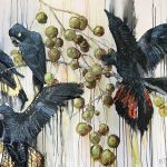 Black Cockatoos with fruit: Sold