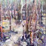 Trees On Kangaroo Island