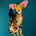 Ichi the Oriental Shorthaired Cat