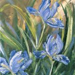 Dream Will Never Die – Blue Irises