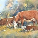 A Bovine Family Affair – Framed