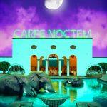 Africa III Carpe Noctem