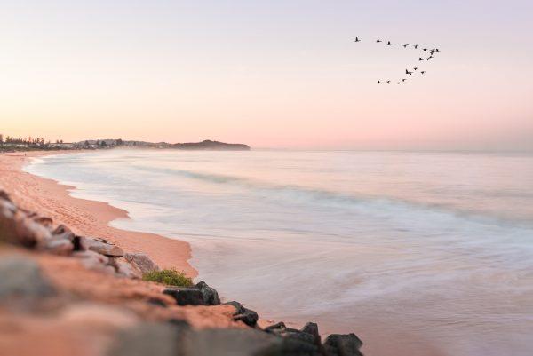 Beach Sunrise With Flock Of Birds