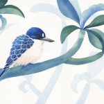 Forest Kingfisher and Foliage