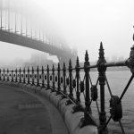 Harbour Fog