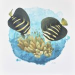 Sailfin Symphony – Coral Reef Scene