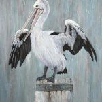 Commission – pelican