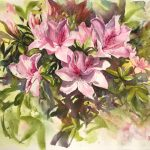 Pink Azaleas original watercolour painting