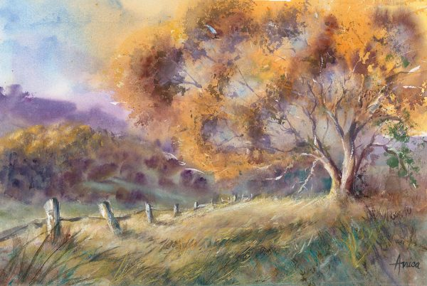 Bathurst Countyside