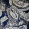 Brain Coral Blue 1