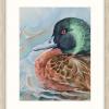 Chestnut Teal Duck In Oyster Frame