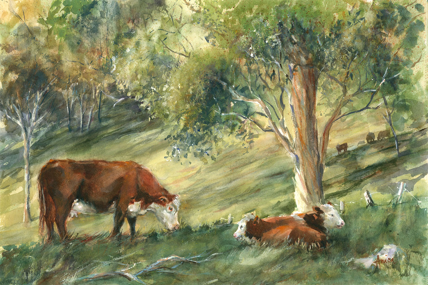 Cows In The Meadow