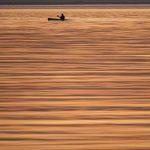 Saffron seas
