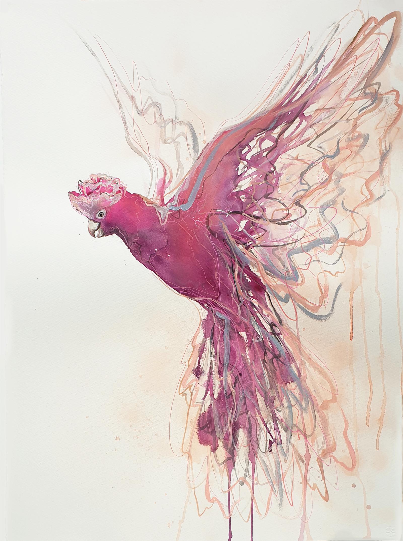 Leni Kae Flight Of The Galah Pink Grey Bird Flying Watercolour Art