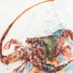 The Lobster's Gaze