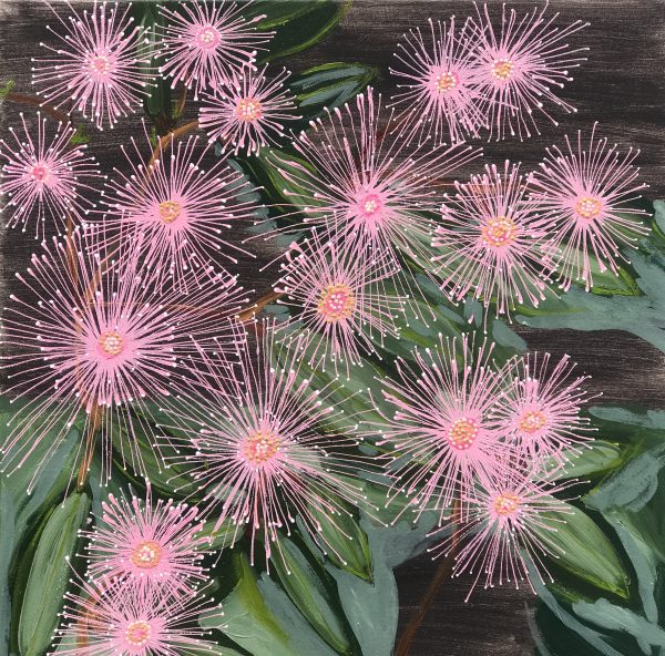Natives Floweringgum July20(60x60)