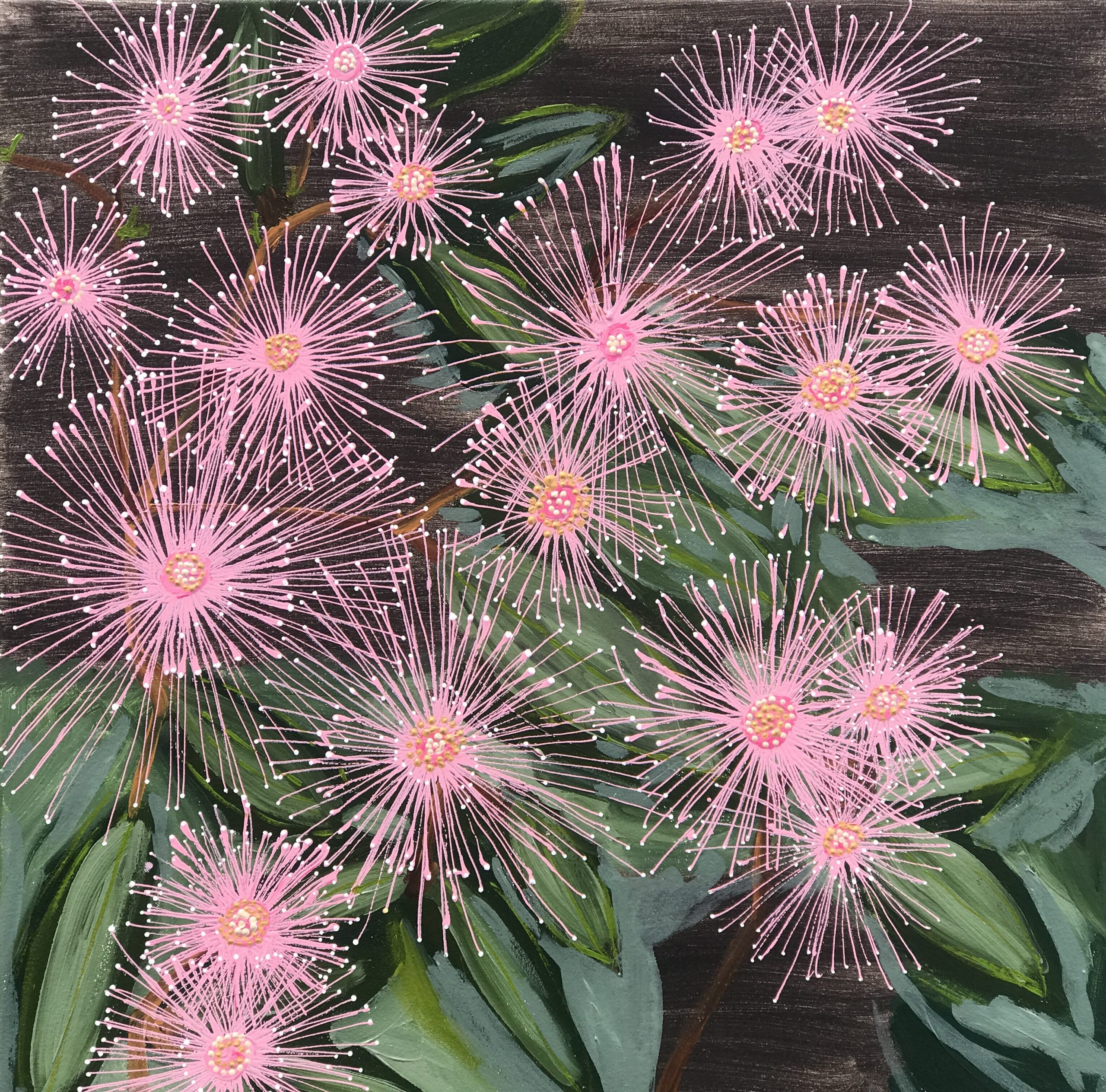 Natives Floweringgum July20(60×60)