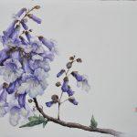 Princess Tree Blossom