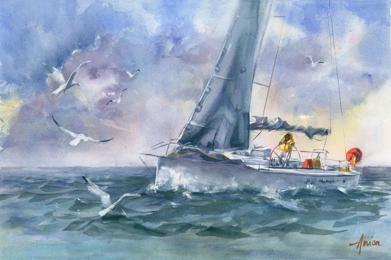 Sailing The Seas +