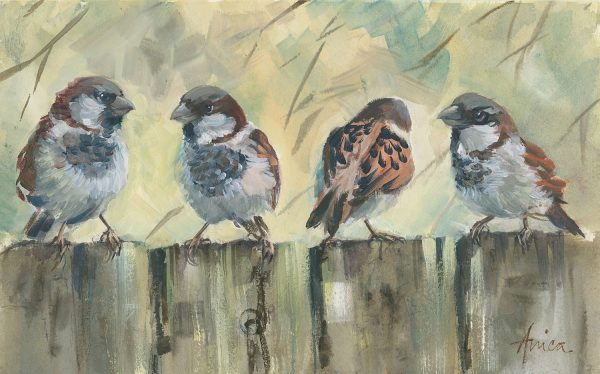 Sparrows On The Fence
