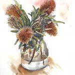 Everlasting Banksias