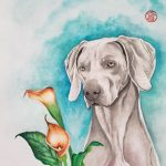 Weimaraner Dog and Lily Flowers – Ltd Ed Print