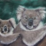 "Koala's in Focus ""Survivors"""