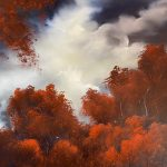 Flame Trees Before the Storm