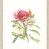 Flamin Flora In Oyster Frame+