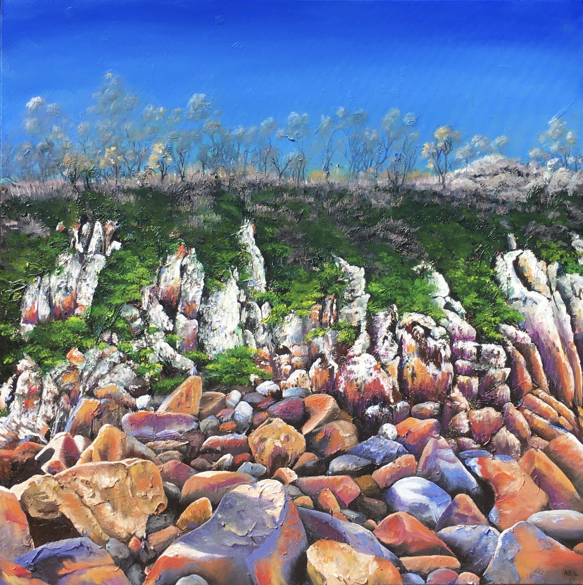 Kim Neil The Cliffs Of Zenith