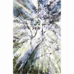 Light in the bush – Original watercolour painting
