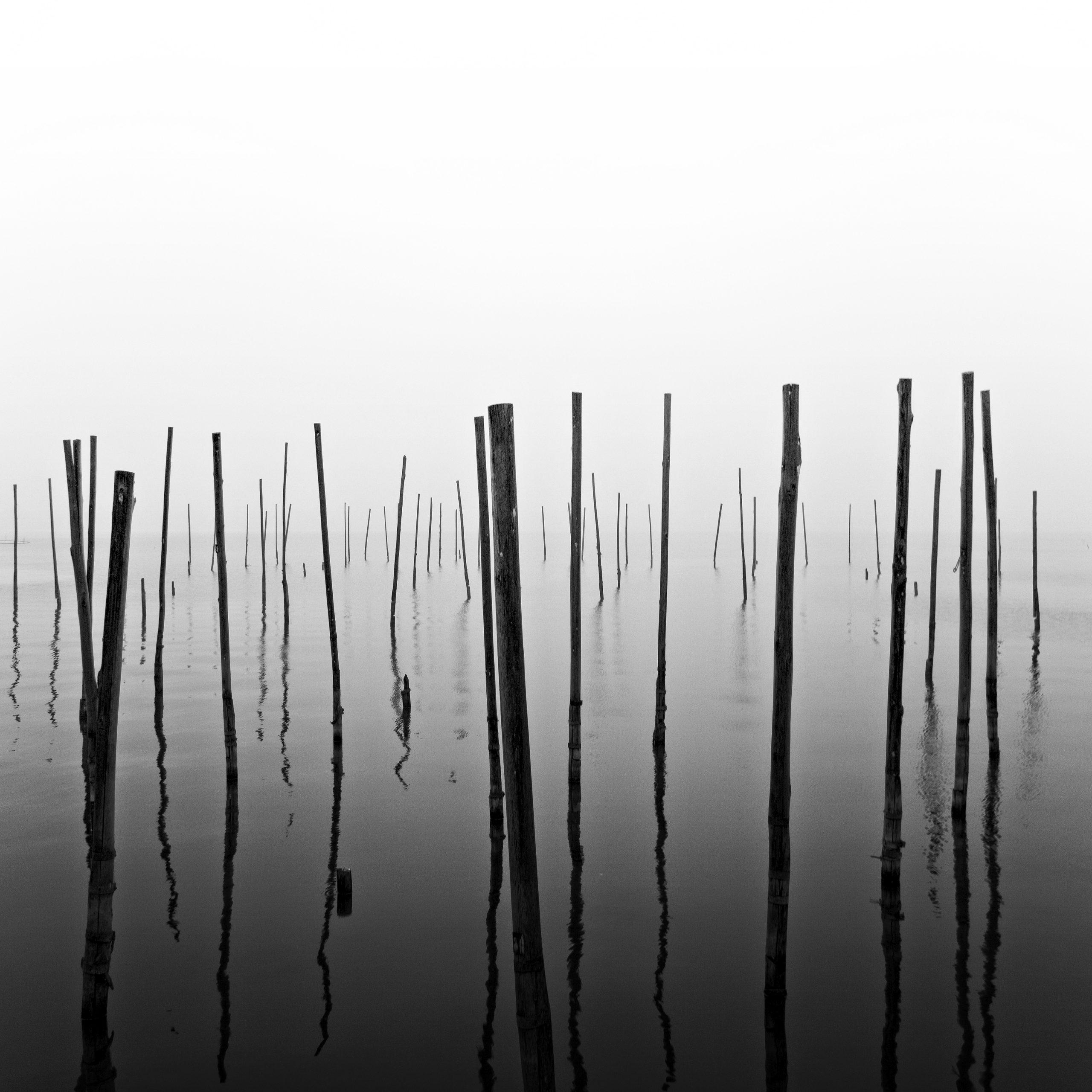 Pcb1030sq The Fishing Poles Reduced