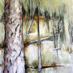 Wetland Reflections