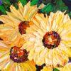 Sunflowers Crop 1
