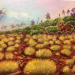The Grasses Flinders Ranges