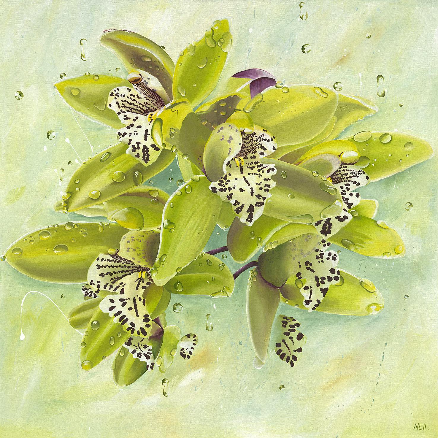 13177 Kim Neil Orchids Ff Web