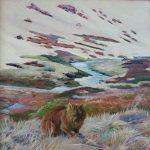 Wandering Wombat, Kosciuszko