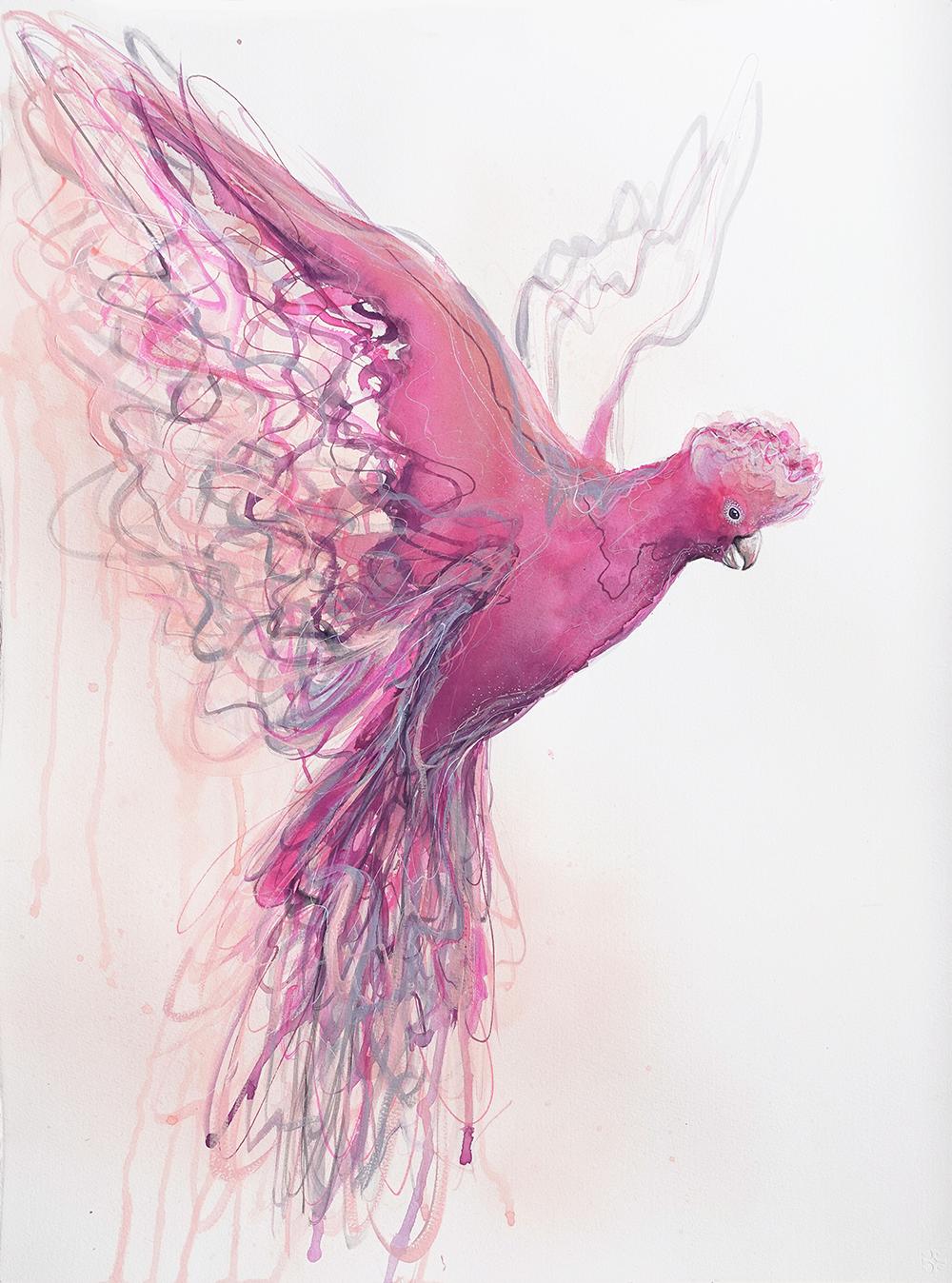 Artist Leni Kae Flight Of The Galah 56x76cm Watercolour Painting 1000px
