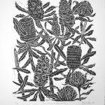 Banksia ans Waratah Flowers linocut print