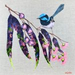 Blue Wren in the Garden