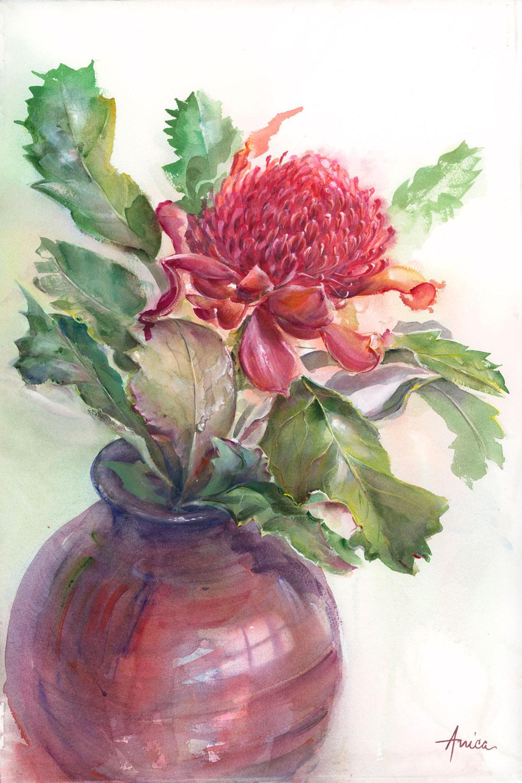 Waratah In Large Red Vase