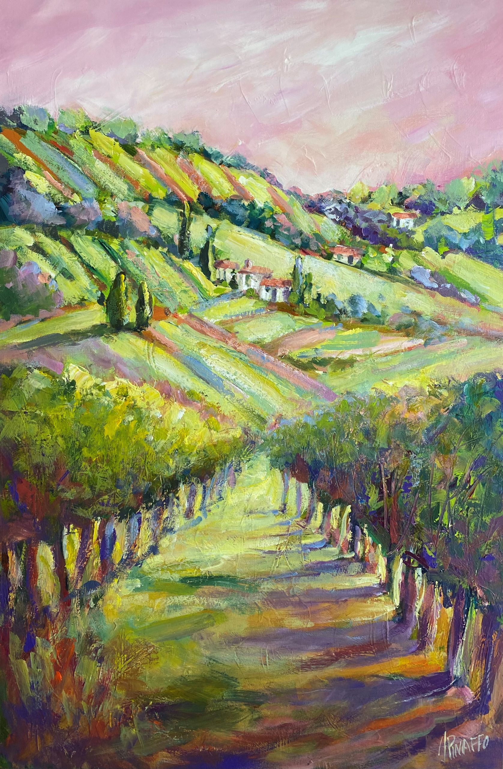 The Hills And Vines Of Tuscany