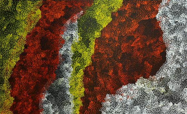 Art Lovers Amanda Dibirdibi Scales 9091 14 Edited
