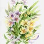 Freesias Number One – Framed