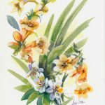 Freesias Number Two – Framed