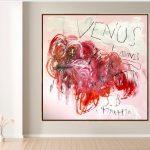 Venus + Adonis 4 CT