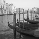 The Gondolas Of Venice II