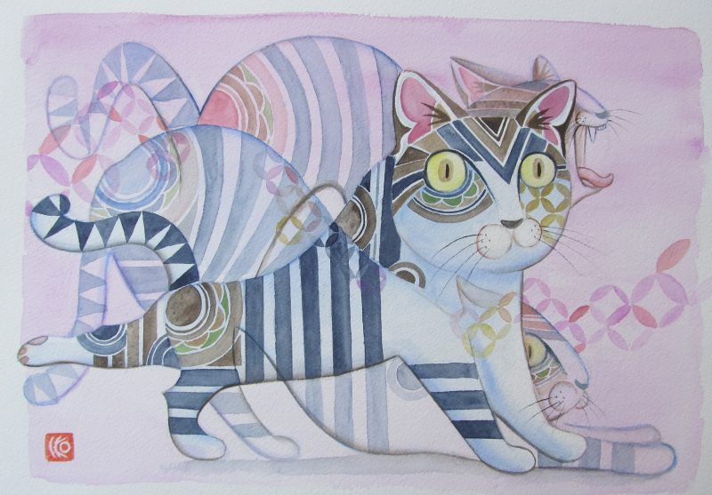 Cat Strech 800x557