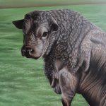 Gus the Bull