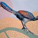 Little Lyrebird